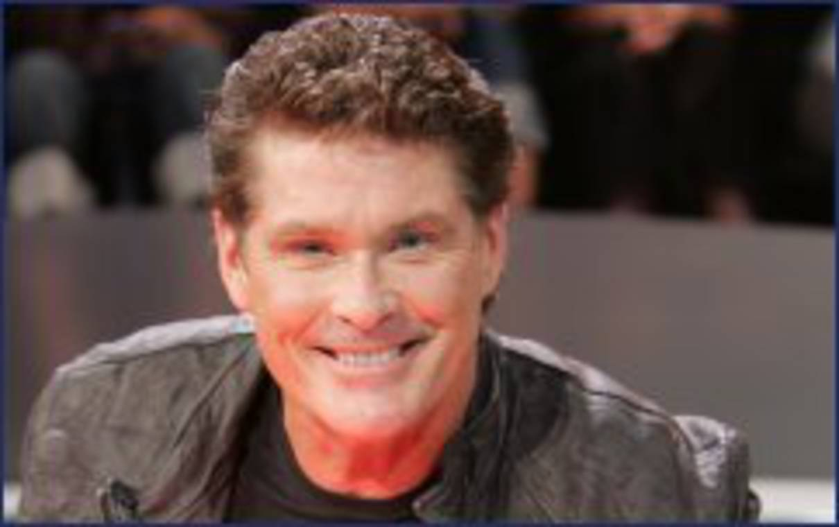 David Hasselhoff Hell Kitchen