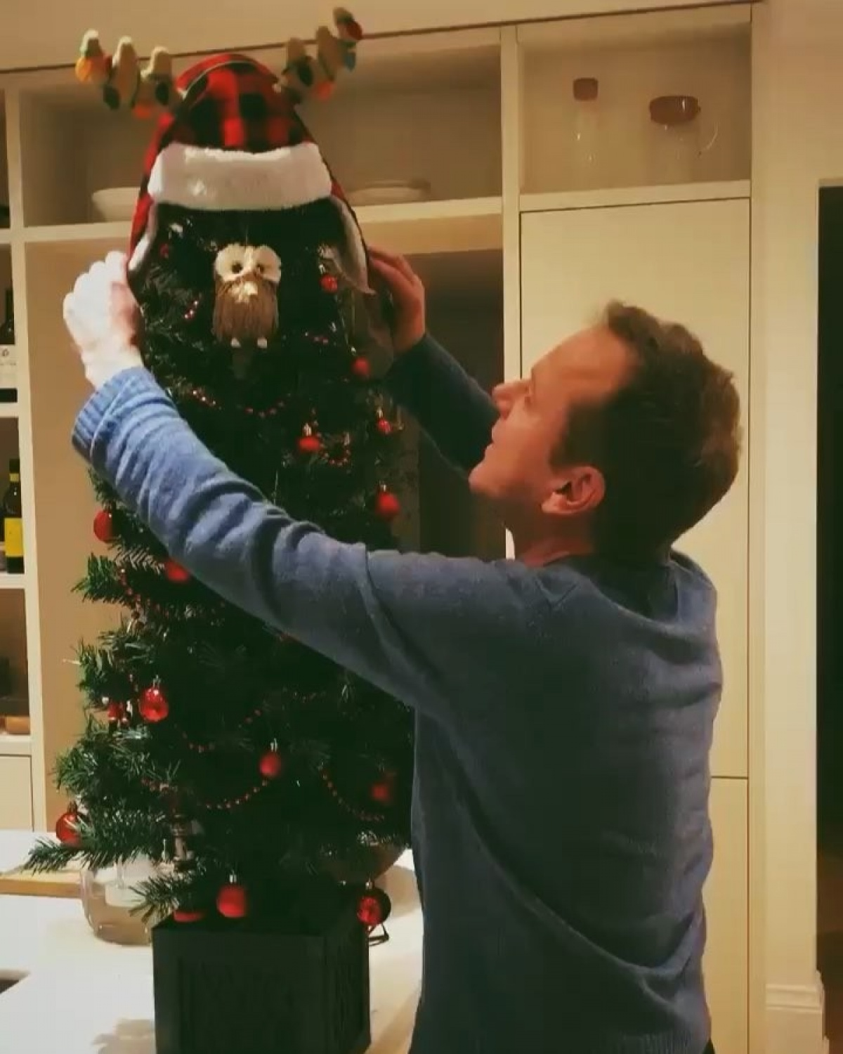 Kiefer Sutherland hugs a Christmas tree in holiday greeting ...