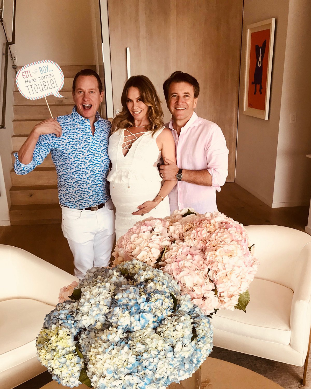 Story Dancing With The Stars Kym Johnson And Robert Herjavec Welcome Twins: Kym Johnson And Robert Herjavec Announce Gender Of Their