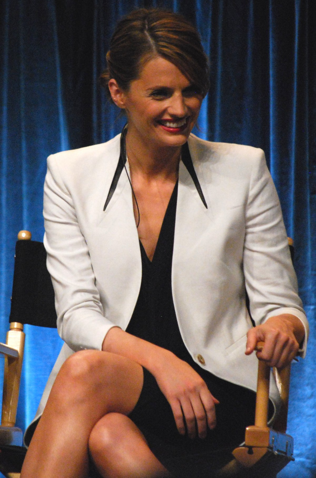 Stana katic married is What Really